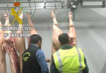 La Guardia Civil de Xàtiva detiene a un varón por falsificar la procedencia de productos cárnicos