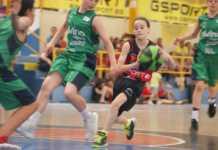 El XVIIé Torneig Nacional Aleví Minibàsquet del Genovés ja té equips.