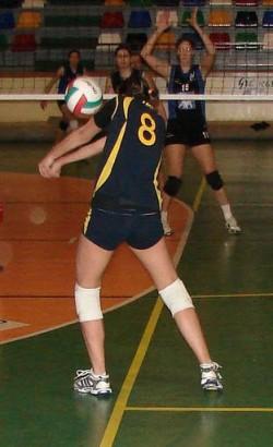 alzira-voleibol