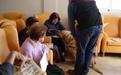 perro-terapia