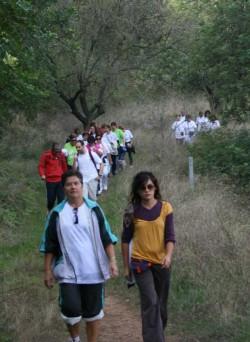 Ruta Sana Xàtiva