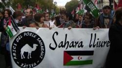 Amics del Poble Sahraui de Xàtiva