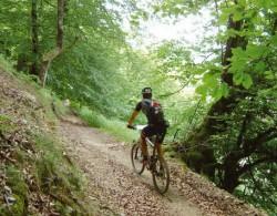bicicleta-btt-