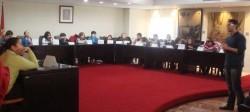 Consell de Xiquets i Xiquetes de Alzira