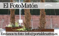 fotomaton2