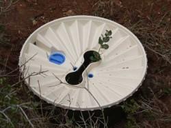 reforestacion-2-waterboxx-