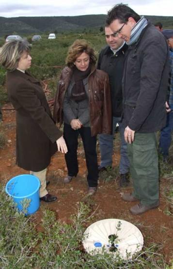 reforestacion-waterboxx-1